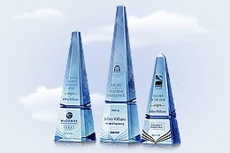 teacher-award-of-excellence-tw17-5554175